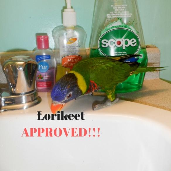 lorikeet-approved